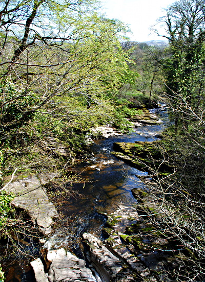River Eden at Stenkrith Park Kirkby Stephen