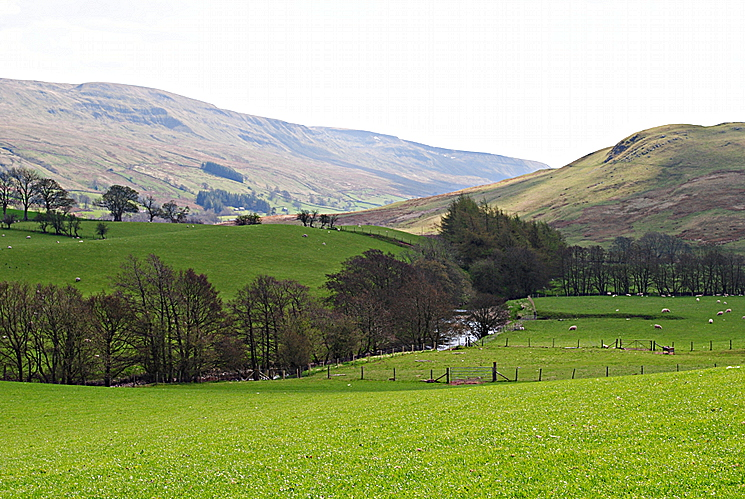 Mallerstang - The Eden and Birkett Common